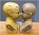 Cabezas Phrenology. No disponible